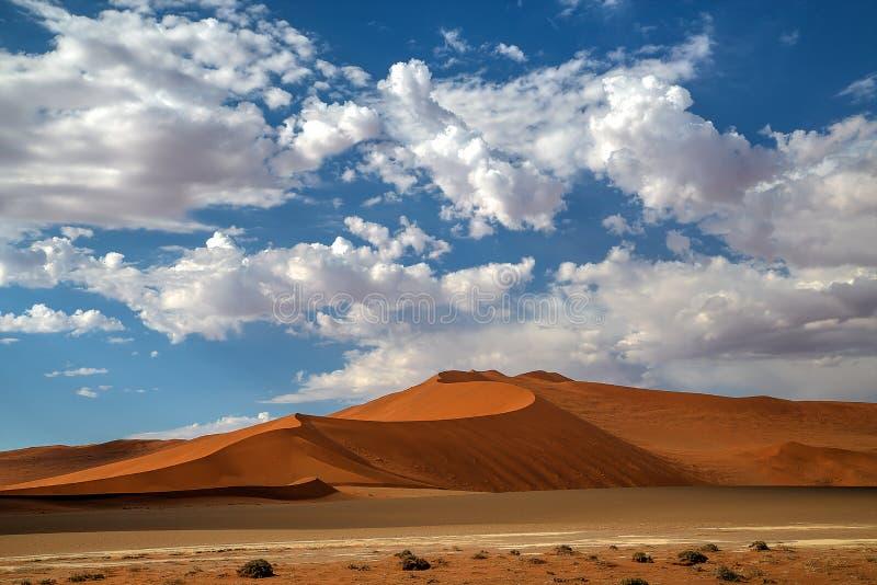 Namib dynlandskap royaltyfri bild