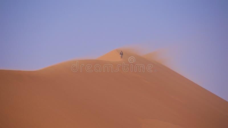 Namib-Naukluft国家公园,纳米比亚- 2016年8月:走在它上面大爸爸沙丘  免版税库存照片
