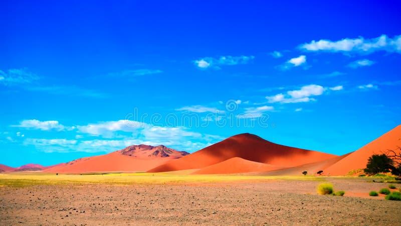 Namib-Naukluft för landskapsanddyn nationalpark, Namibia arkivbilder