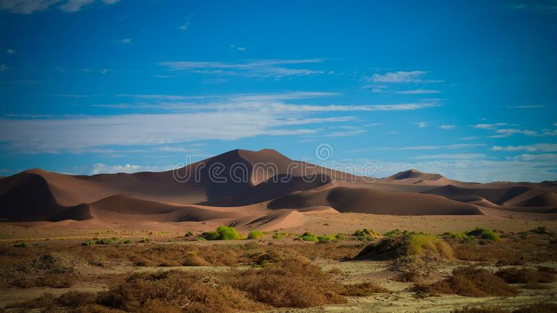 Namib-Naukluft för sanddyn nationalpark i Namibia royaltyfria foton