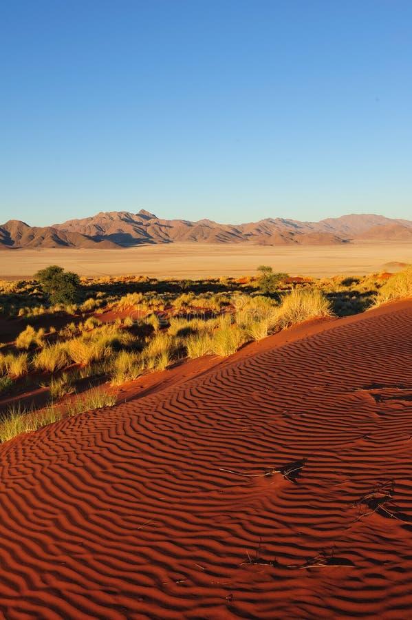 Download Namib Rand Nature Reserve (Namibia) Stock Photo - Image: 15498304