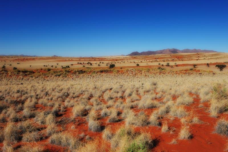 Download Namib Rand Nature Reserve (Namibia) Stock Photo - Image: 16875712