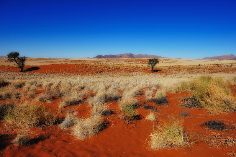 Namib Rand Nature Reserve (Namibia). Beautiful view over the Namib Rand Nature Reserve in the Namib Desert (Namibia stock photo