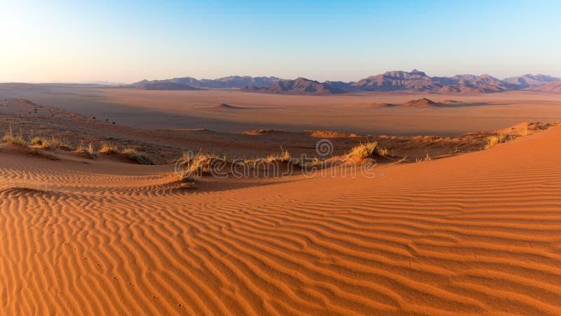 Namib Rand Nature Reserve, Namibia arkivbild