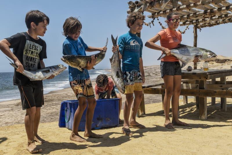 NAMIBE/ANGOLA - 3-ЬЕ НОЯБРЯ 2018 - группа в составе дети как раз возвращенные от удя утра с рыбами в руке стоковая фотография