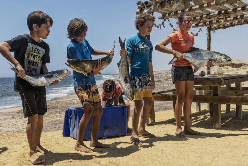 NAMIBE/ANGOLA - 03NOV2018 - grupa dzieci właśnie wracający od połowu ranku z rybą w ręce fotografia stock
