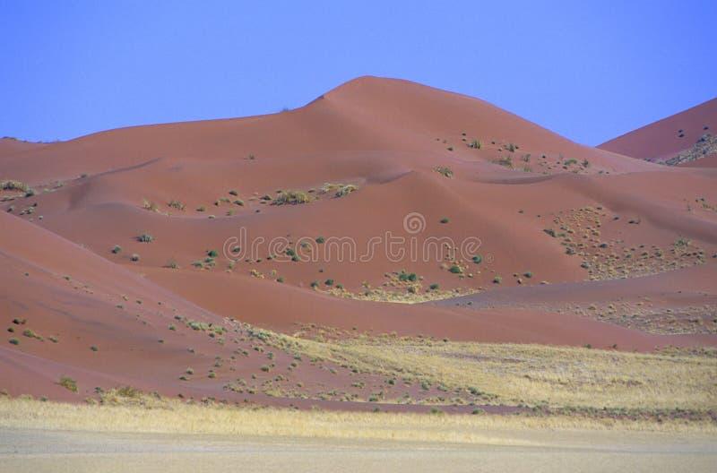 Namibia obraz royalty free