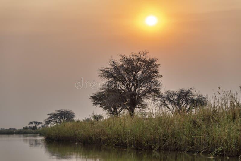 Namibia, Africa. Okavango. River at dusk royalty free stock image
