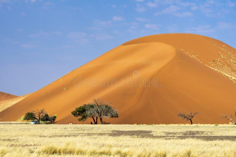 Namibia, Africa. Sossusvlei dunes. Namibia, Africa. Sossusvlei Namib Naukluft National Park stock photography