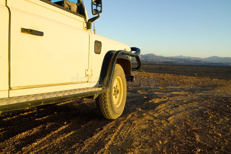 namibia safari zdjęcia stock