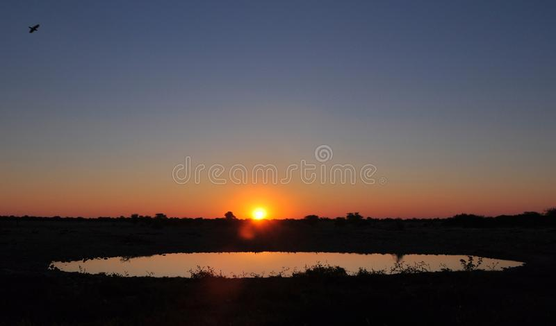 Namibia: Sonnenuntergang am Okauquejo-Lager waterhole in Etosha-Nation lizenzfreies stockfoto