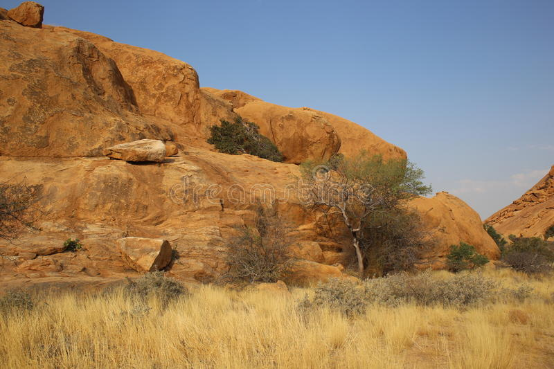 Namibian Landscape. Photo from my recent safari royalty free stock photos