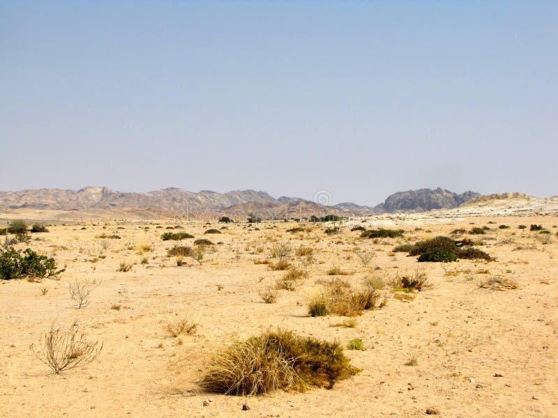Namibische Landschaft stockfotografie