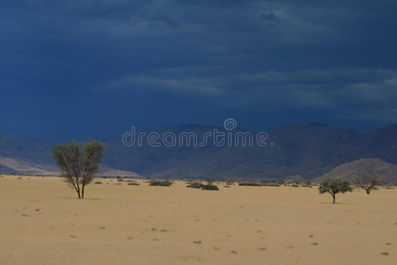 Namibische Landschaft stockfotos