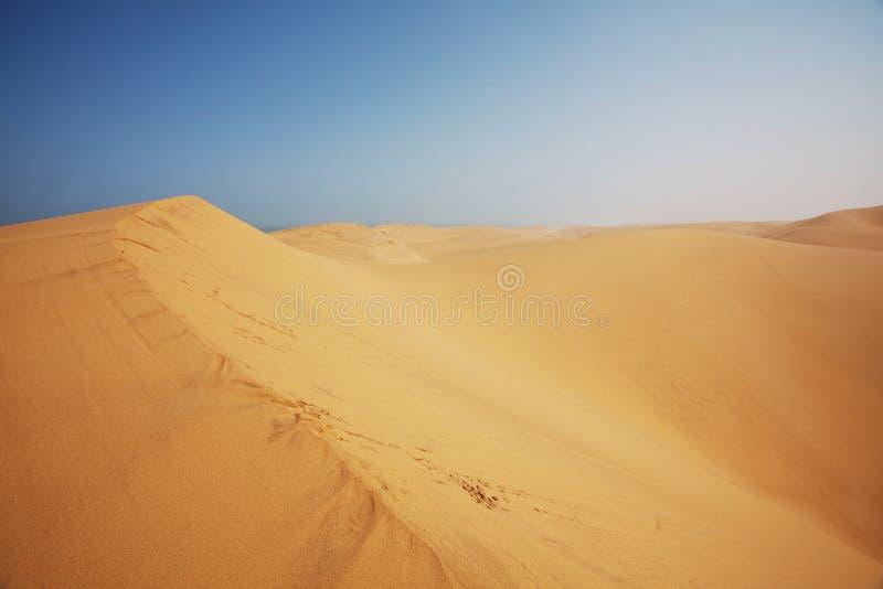 Namibische Wüste stockfotografie