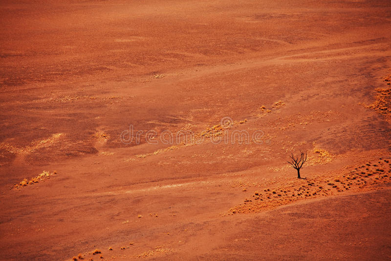 Namibische Wüste stockbilder