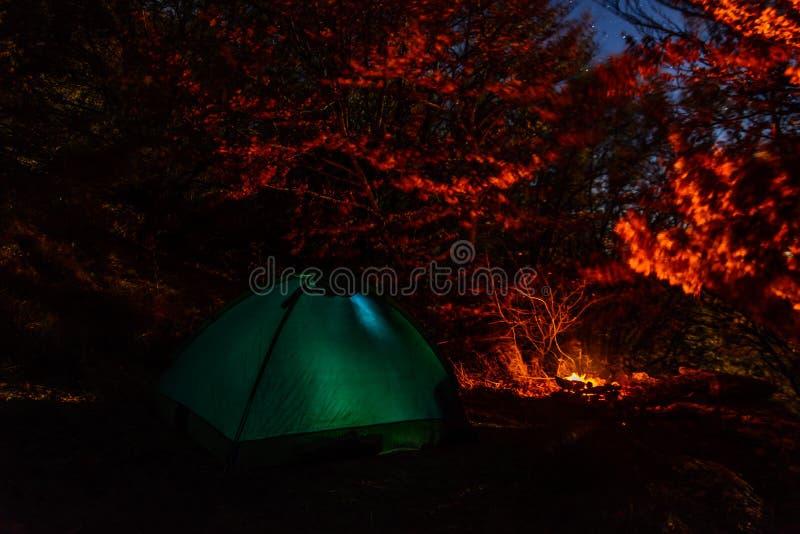 Namiot przy nocą w lesie w obozie obrazy royalty free
