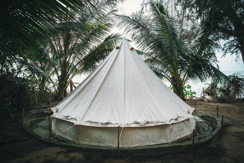 namiot wśród drzewek palmowych na tropikalnej wyspie namiot w postaci jurty biały nowożytny wigwam zrobił tkanina dla wydawać noc zdjęcia royalty free