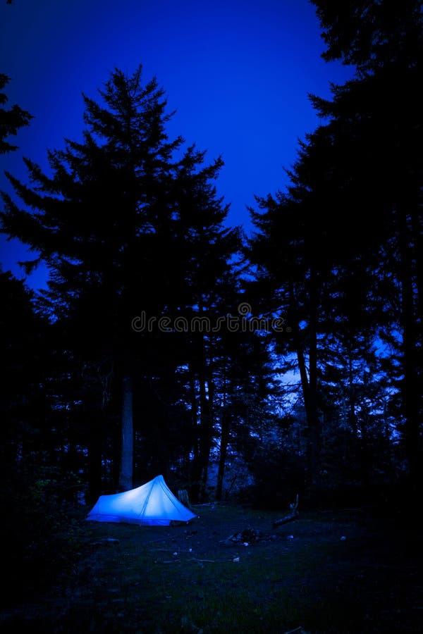 Namiot w lesie przy nocą obrazy royalty free