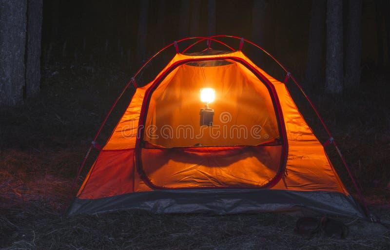 Namiot w lesie przy nocą obrazy stock