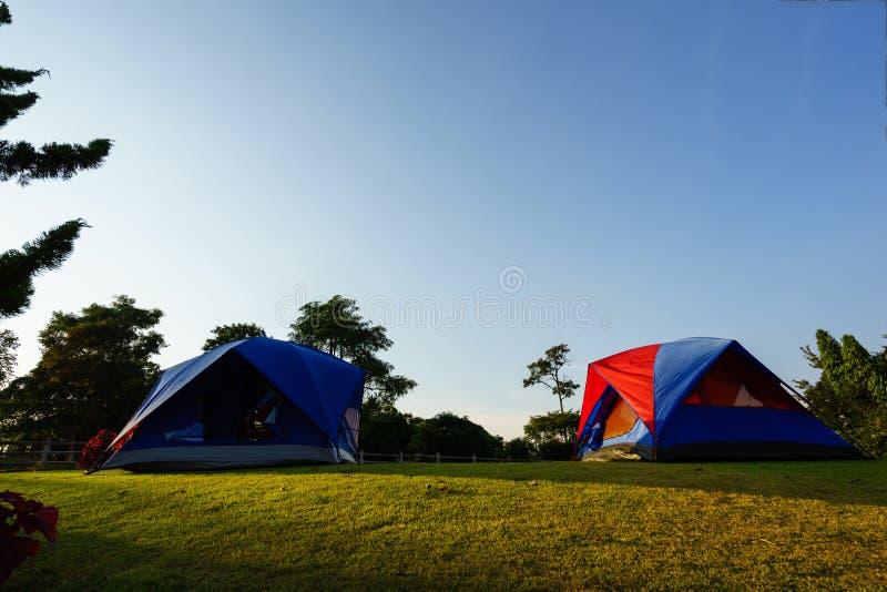 Namiotowy ustawianie dla campingu obrazy royalty free