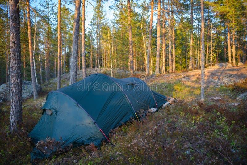 Namiotu obóz w lesie obrazy stock