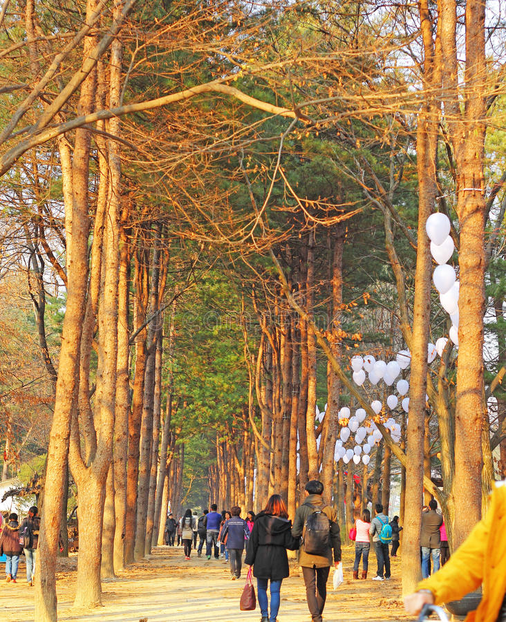 NAMISEOM - 26-ОЕ НОЯБРЯ: Туристы навещают традиционный кореец c стоковые изображения rf