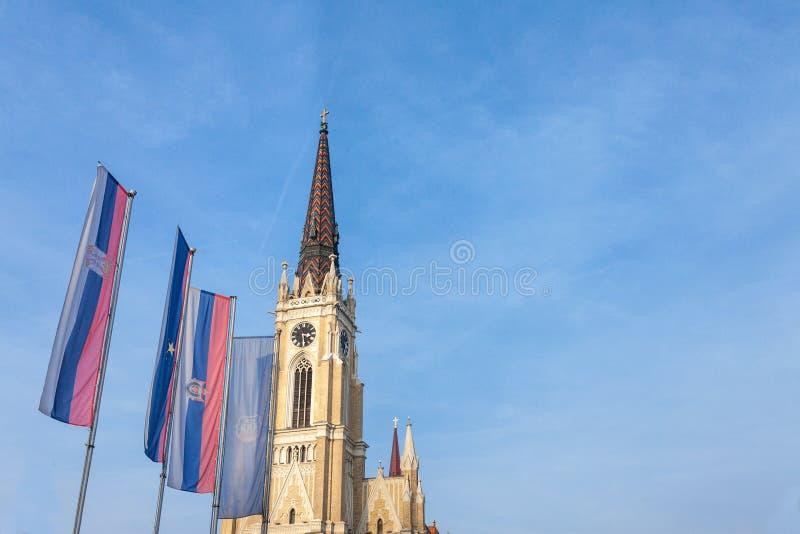 Namnet av Mary Church, också som är bekant som Novi Sad den katolska domkyrkan på en solig eftermiddag med flaggorna av det Voivo royaltyfria bilder