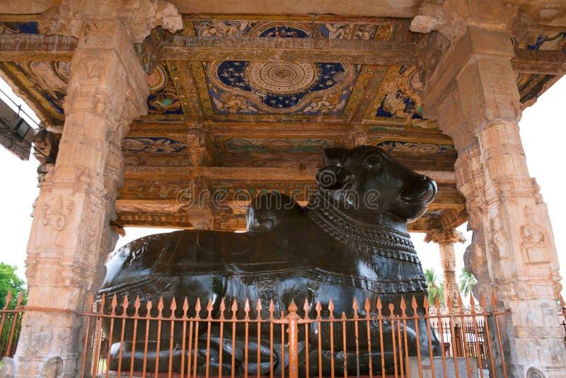 Nandi monolítico enorme, templo de Brihadisvara, Tanjore, Tamil Nadu imagem de stock