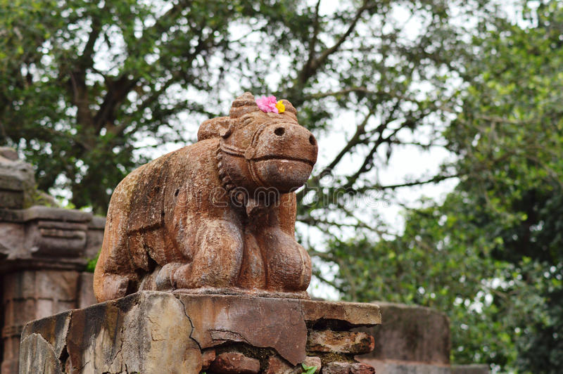Nandi at Polo Forest, Gujarat royalty free stock photo