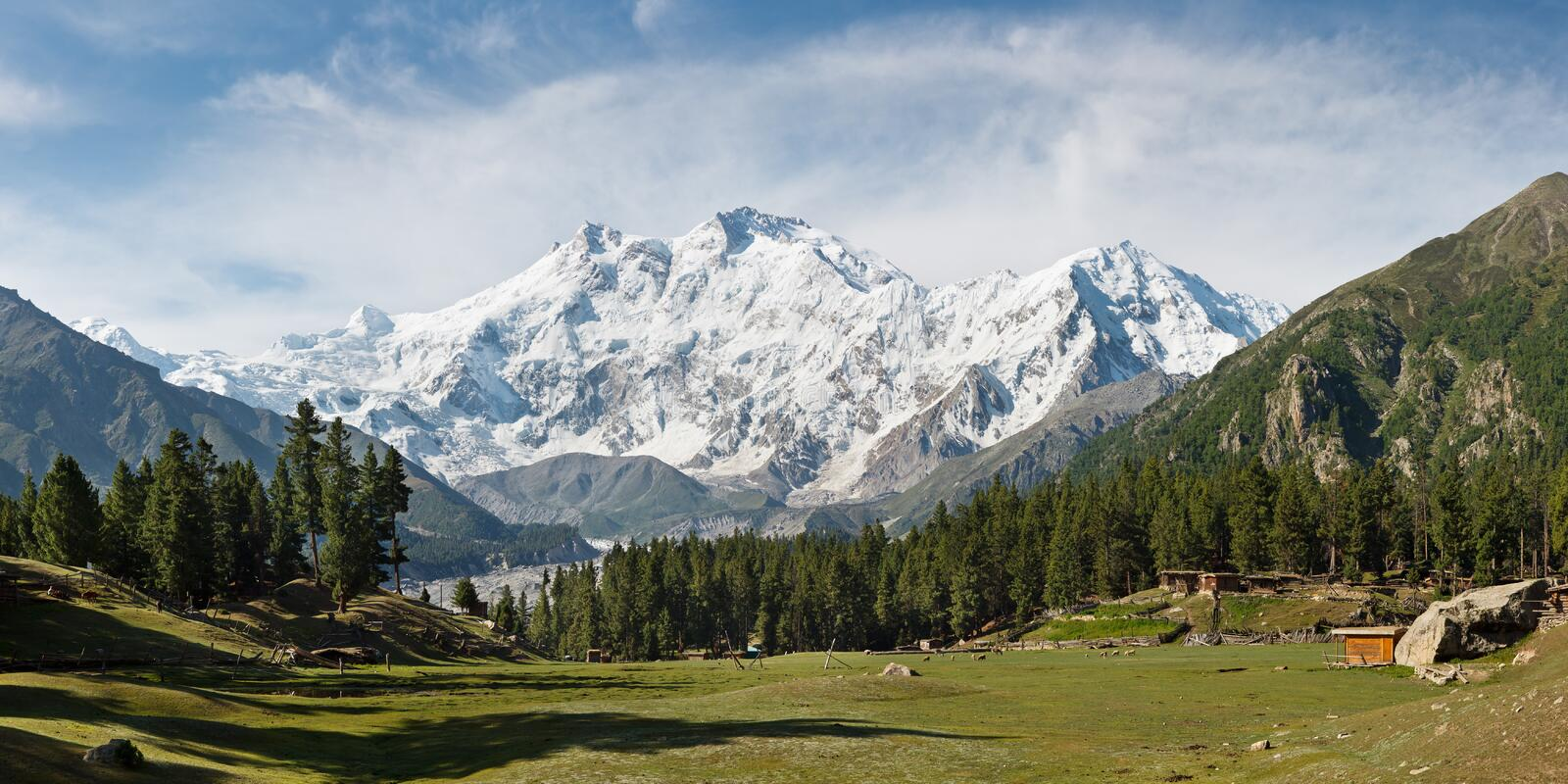 Nanga Parbat and Fairy Meadows Panorama, Himalaya, Pakistan. The ninth highest mountain in the world and western anchor of the Himalaya seen from the idyllic stock image