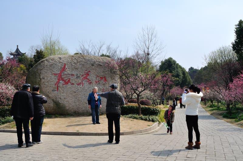 Nanjing Meihua Mountain stock image