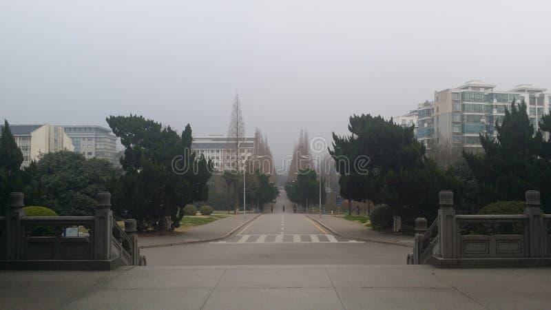 Nanjing rolnictwa kampus fotografia royalty free