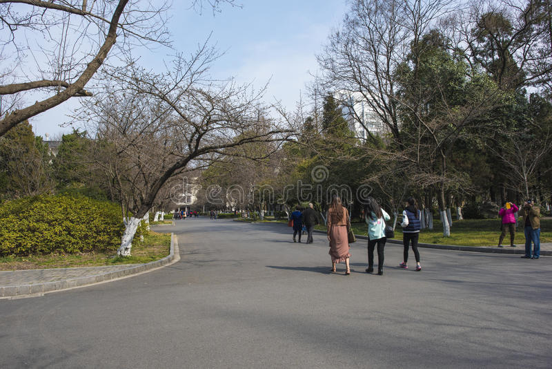 Nanjing skogsbrukuniversitetsområde royaltyfri bild