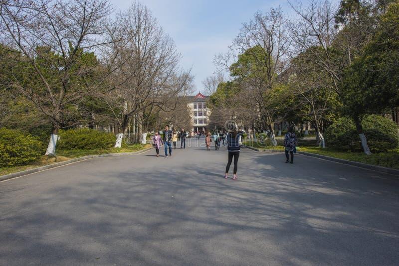 Nanjing skogsbrukuniversitetsområde royaltyfri fotografi