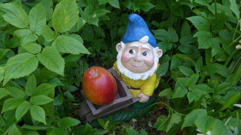 Nano del giardino con la carriola e la mela immagini stock