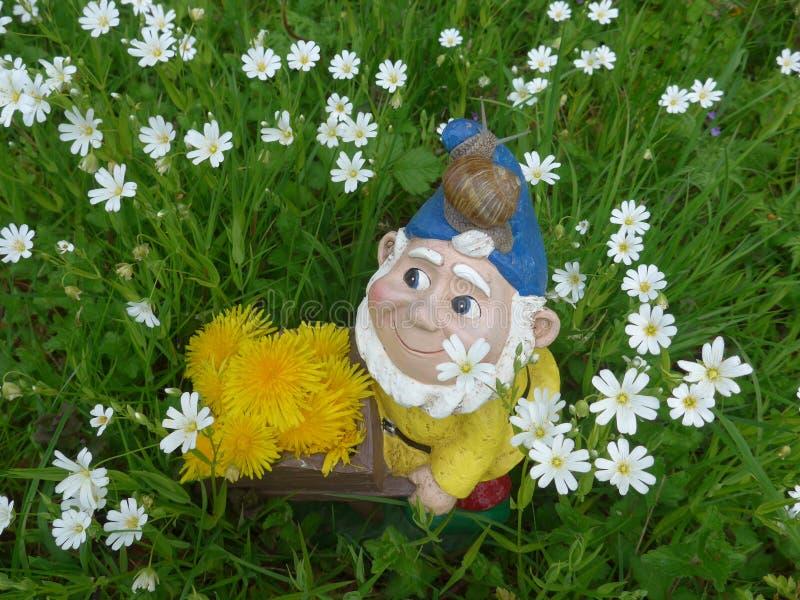 Nano del giardino con la carriola e lumaca su un prato verde con i fiori fotografia stock libera da diritti