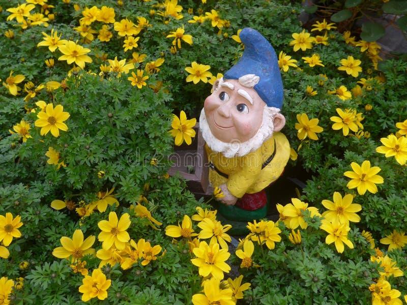 Nano divertente del giardino con la carriola in un letto di fiore immagini stock libere da diritti