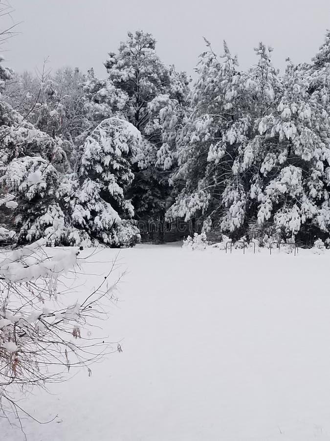 Nanowatt Georgia Snow imagem de stock