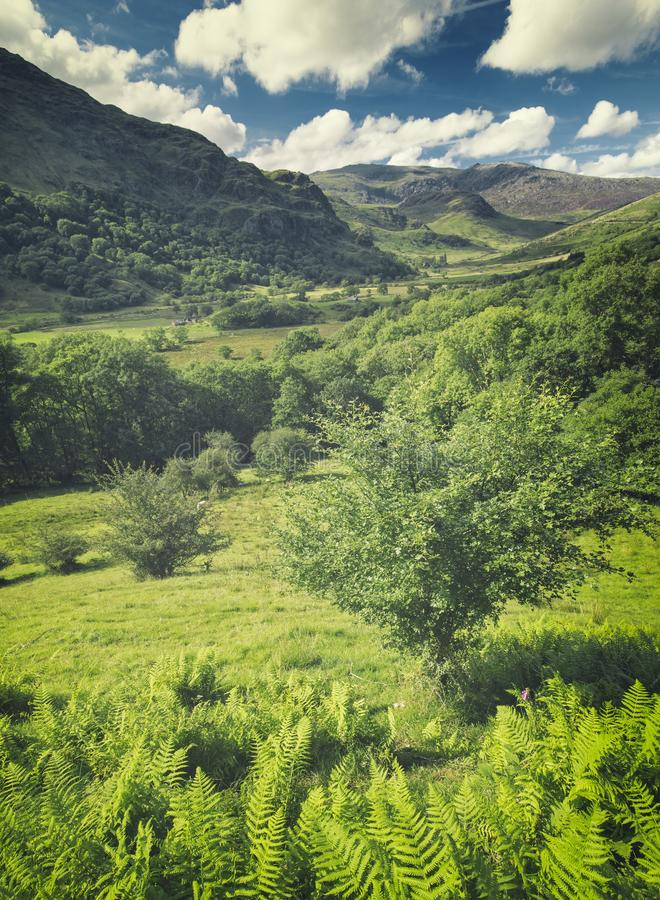 Nant Gwynant Valley in Summer royalty free stock image