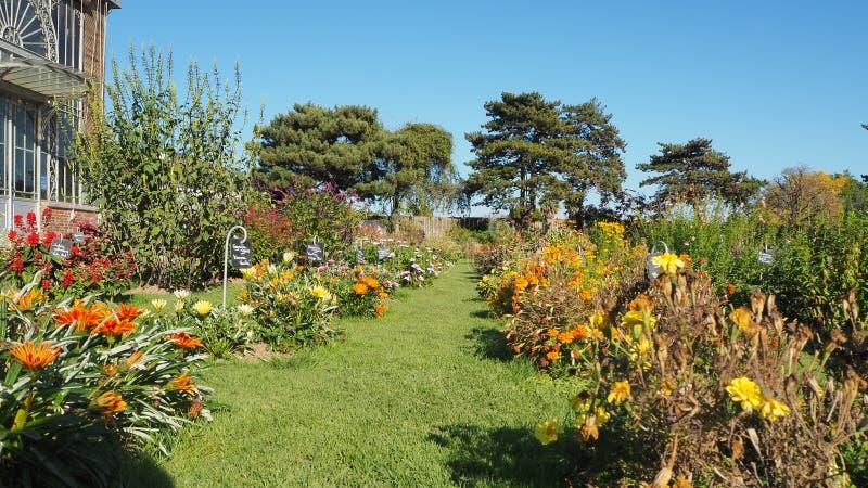 Nantes, Francia Il Jardin des Plantes il de Nantes è un giardino botanico municipale nel centro urbano immagine stock