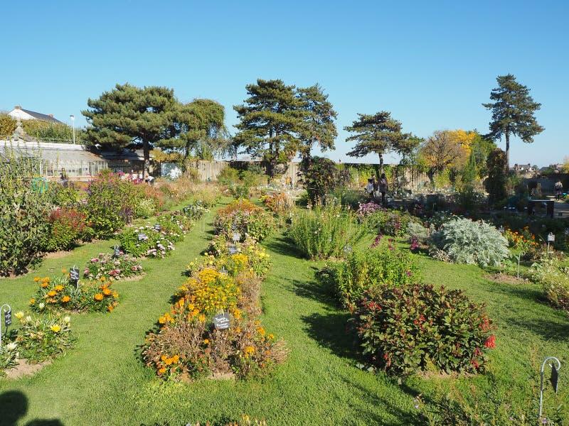 Nantes, Francia Il Jardin des Plantes il de Nantes è un giardino botanico municipale nel centro urbano fotografia stock