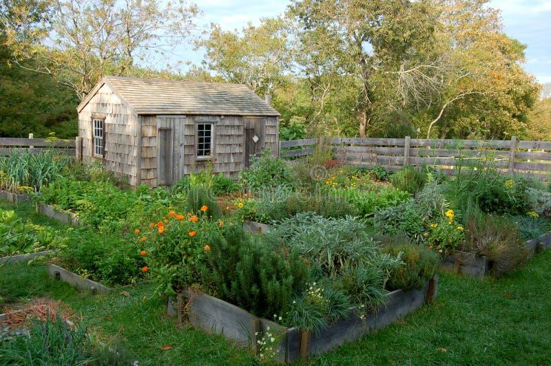 Nantucket, MA: Sarg-Hauscolonial-Garten stockfoto