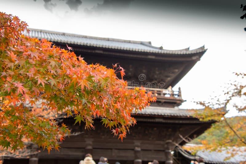 Nanzenji temple framed by beautiful autumn maple. Higashiyama  Kyoto royalty free stock photos