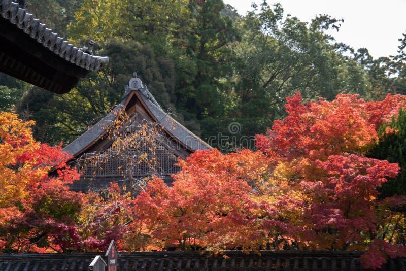 Nanzenji temple framed by beautiful autumn maple. Higashiyama  Kyoto stock photo
