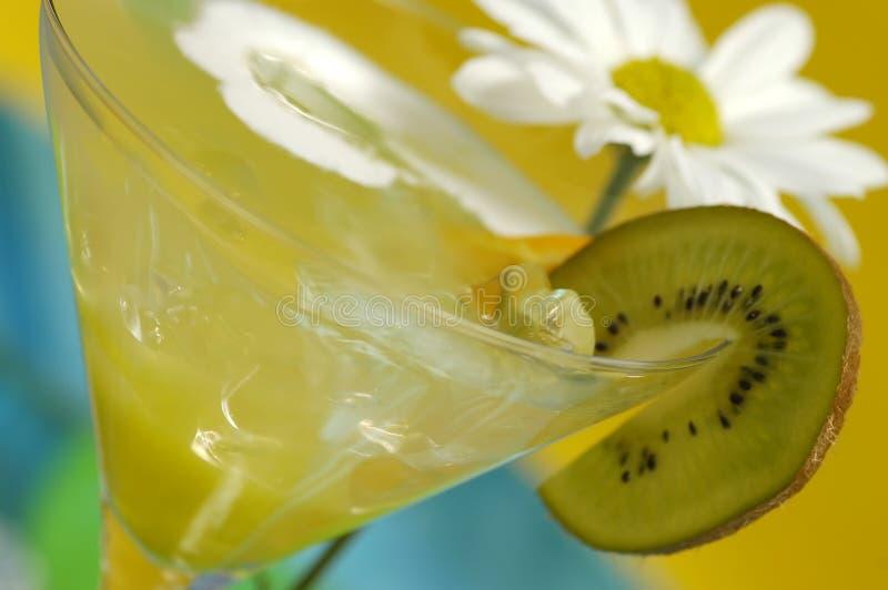 napój Martini fotografia stock
