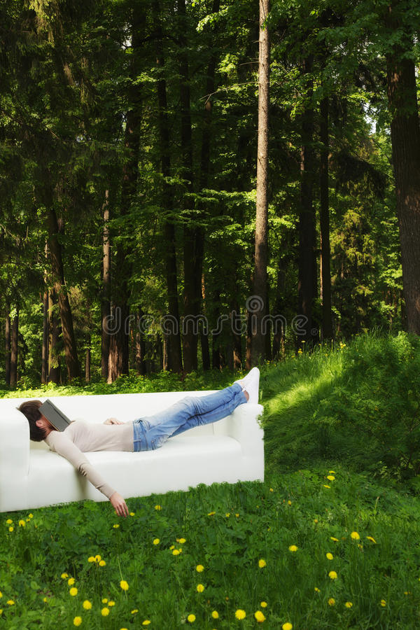 Download Nap in green forest stock image. Image of dense, sleeping - 32594233