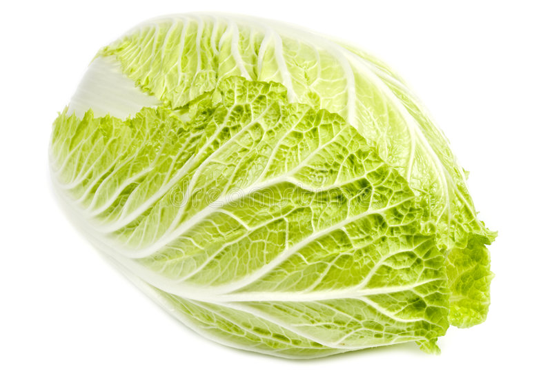 Download Napa Cabbage stock photo. Image of textures, chinese, white - 7096180