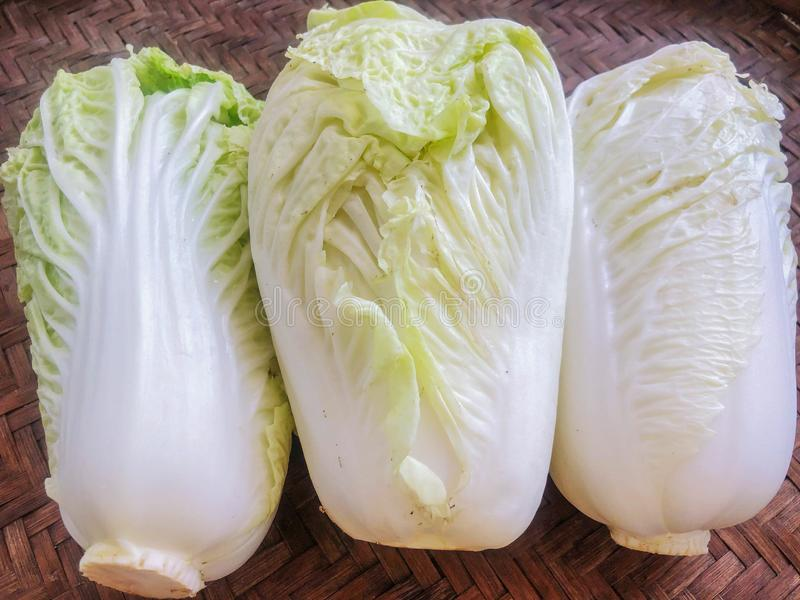 Napa cabbage on the background White stock photo