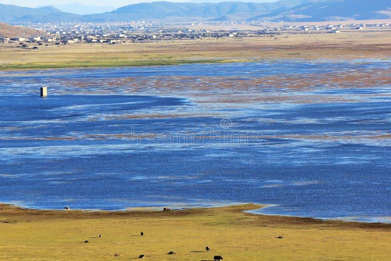 Napa jezioro zdjęcie stock